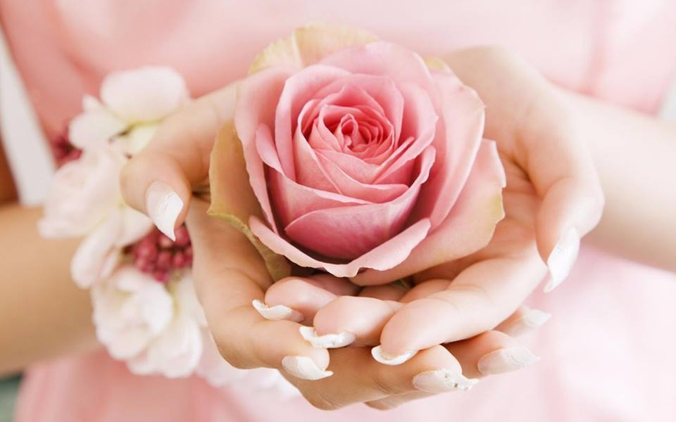 rose-from-fatih