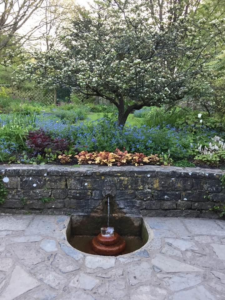 chalice well garden 12