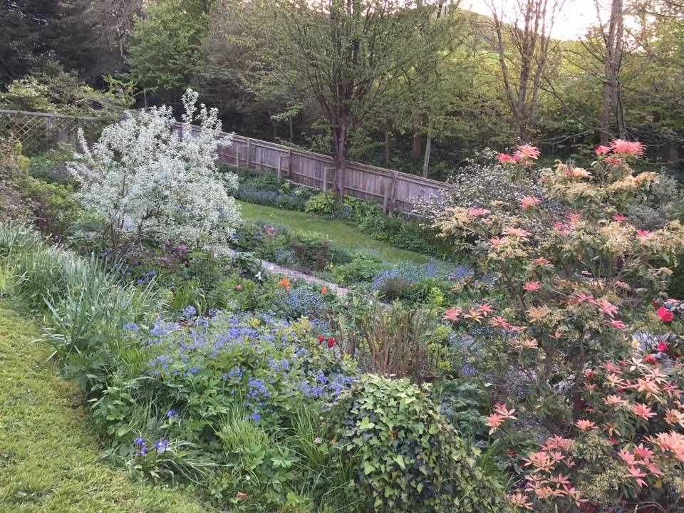 chalice well garden 6